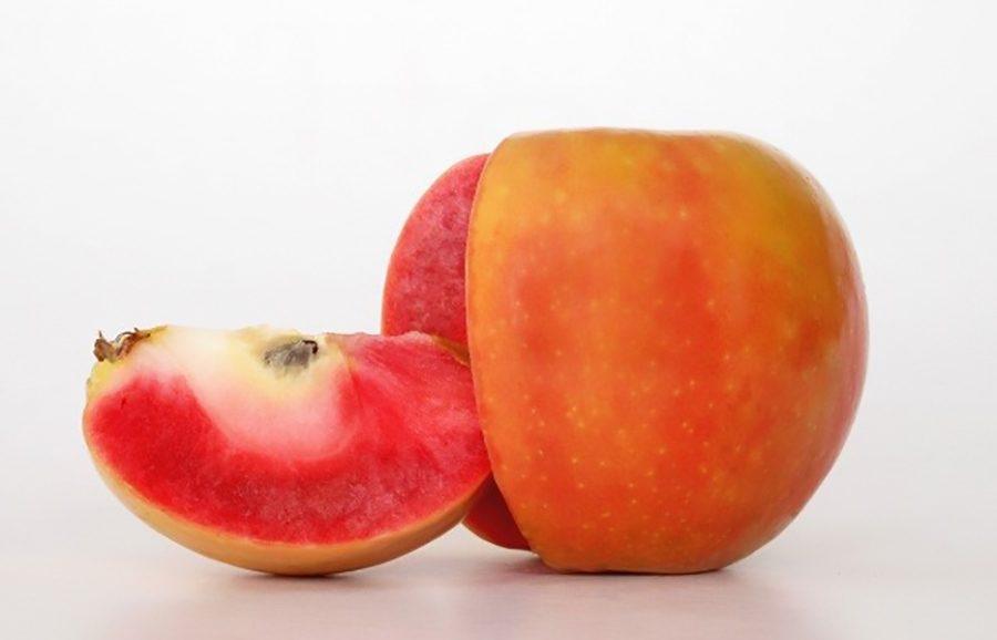 ANFIC-apple-TC3
