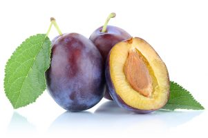 ANFIC-prune-fruit-tree-varieties